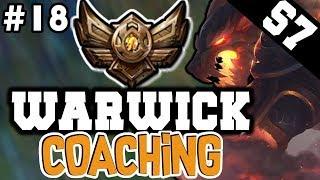 Warwick Jungle Coaching Guide (Bronze) - League of Legends Coaching #18
