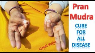 Rog Ka Ram Baan Upay Pran Mudra - Best Remedy For Any Disease