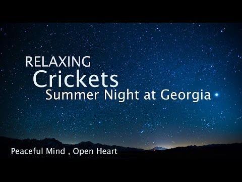 Sleep and Relaxation Nature Sounds, Crickets Summer Night - Sleep Music