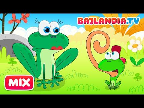 Xxx Mp4 Była Sobie żabka Mała Piosenki Dla Dzieci Bajlandia Tv ZESTAW 10 Piosenek 3gp Sex