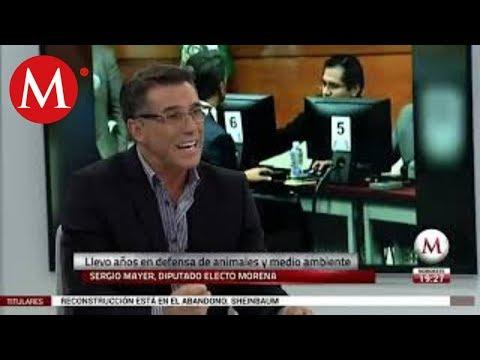 Xxx Mp4 Sergio Mayer Mi Trabajo En El Congreso Hablará Por Mí 3gp Sex