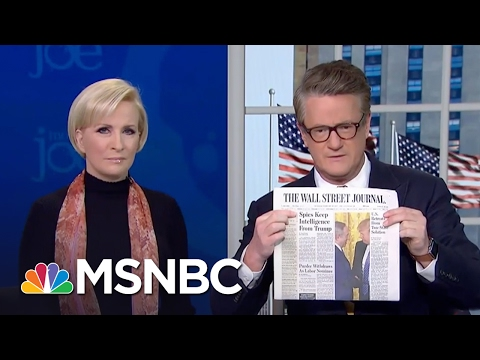 Massive Purge Of Intel Community Leakers Possible After Mike Flynn Situation Morning Joe MSNBC