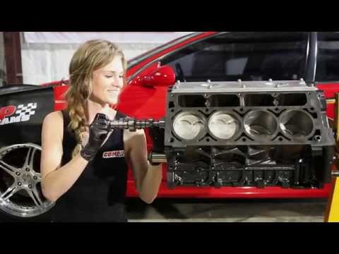 Installing cam, lifters, heads and intake! - In the shop with Emily EP 4