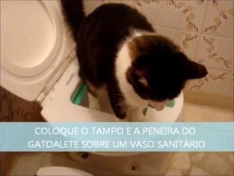 Gatoalete Revolução em Sanitário para Gatos