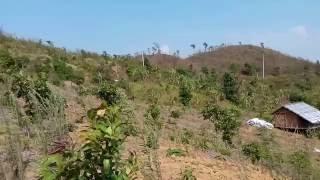 পাহাড়ি সুন্দরী রুপ, বান্দারবন, বাংলাদেশ