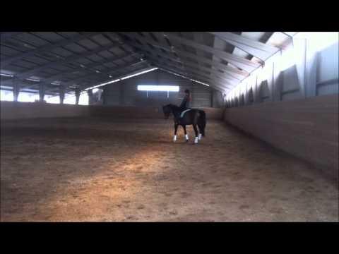 Dressyr träning Melizza 6 4 13