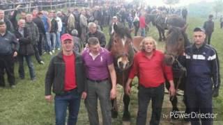 Goci & Lazo Milorad Stojanovic ZIS Novo Novo 2017