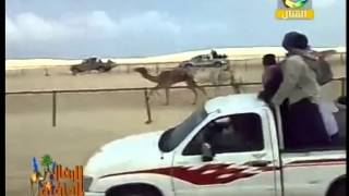 الرمال الدافئة الشيخ امين الشعراوي البلوي حول سباق الهجن العربية .