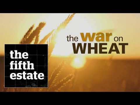 Xxx Mp4 The War On Wheat The Fifth Estate 3gp Sex