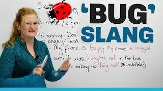 SLANGwords using 'bug' in English