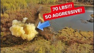 70 LBS Of Tannerite VS BEAVER DAM!!!