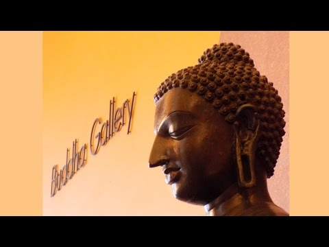 Xxx Mp4 Our Visit To The Buddha Collection At The Birmingham Museum England August 2015 3gp Sex