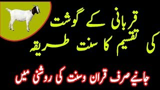 Qurbani ka gosht ki taqseem ka tareeqa in Urdu|Qurbani K Masail|قربانی کے گوشت کی تقسیم