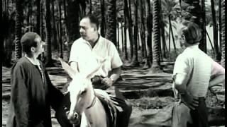 فيلم ملك البترول كامل اسماعيل ياسين