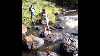 Natureza viva Gandu Bahia