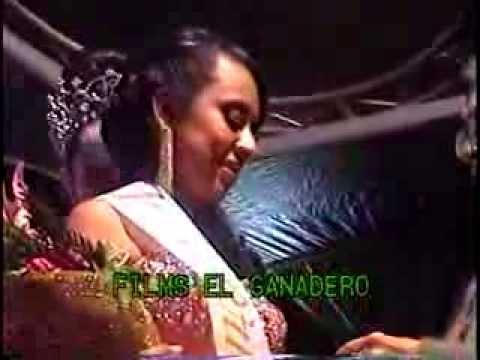 Nuestra Belleza Chiautla de Tapia 2013 Premiacion