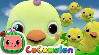 Five Little Birds 2  - ABCkidTV