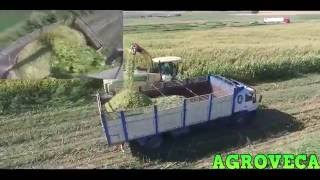 KRONE BIG X480 + EASYCOLLECT/// CORN SILAGE-2016
