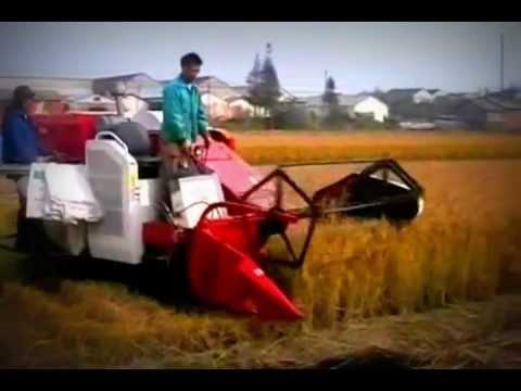pemanen padi combine SYAMSU HARVESTER