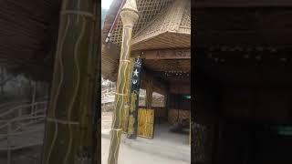 Famous Hornbill Festival Naga Village