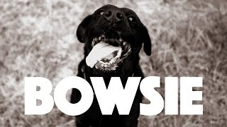 Shortstraw - Bowsie (Official Video)
