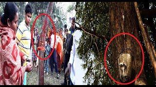 সুবহানাল্লাহ: দেখুন আল্লাহ চাইলে কি না করতে পারেন-ES Live Bangla News