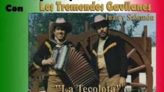 Los Tremendos Gavilanes -  La Tecolota (Polka)