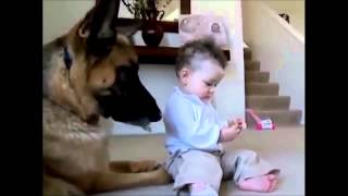 funny child jokes with a dog. COOL