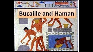 Bucaille the Koran and Haman