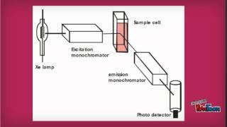 spectrofluorimetry