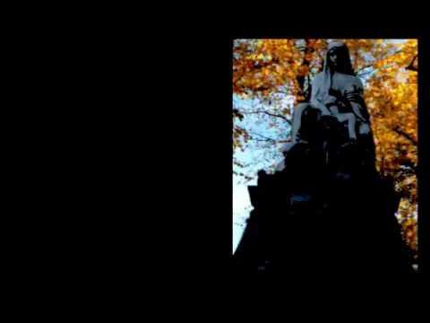 SEX DWARF CAUGHT ON CAMERA - VIRGIN POONTANG  SCHWARZ ZU VIOLETT - (سلسلة الحب الحيوان)