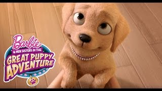 Barbie Meets Taffy | Barbie & Her Sisters in a Great Puppy Adventure | Barbie