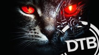 【PREMIERE】Excision & Downlink - Robo Kitty
