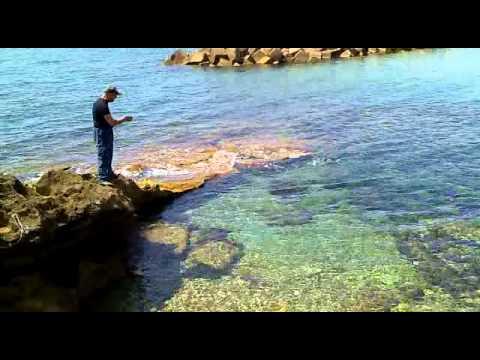 Pesca del polipo con la purpara santa Maria di Castellabate SA Italy.