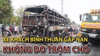 (VTC14)_Xe khách Bình Thuận gặp nạn không liên quan đến trộm chó