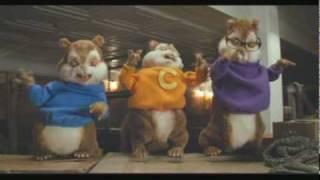 chipmunks - evil ;)
