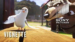 THE STAR Vignette - Meet Dave