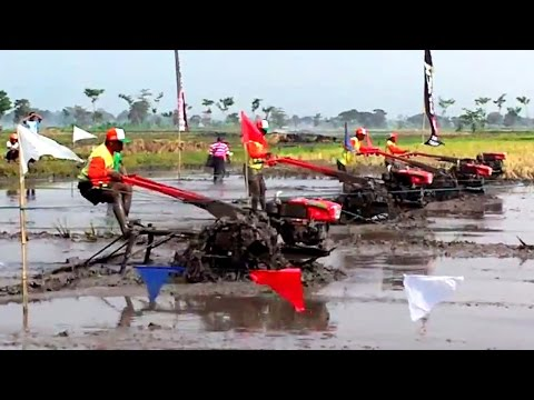 Quick Two Wheel Tractor Racing Championship