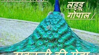 Bal Gopal / Thakurji / Ladoo Gopal Seva - In Hindi - How to do seva of Bal Gopal...