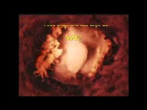 parto cesariano com laquiadura do nascimento do leonardo