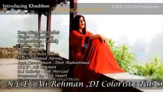 Pashto New Song 2013   Trailor   Singa Muhabbat   Khushboo New Song