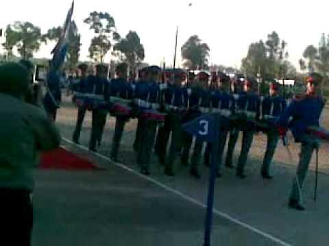 desfile juramento 2011