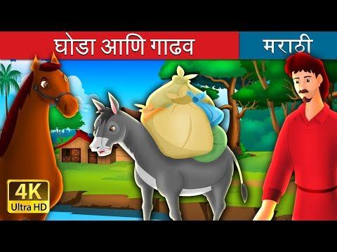 Xxx Mp4 घोडा आणि गाढव Marathi Goshti Marathi Fairy Tales 3gp Sex