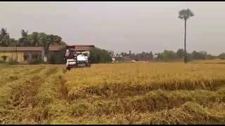 Yanmar harvester sbp(2)