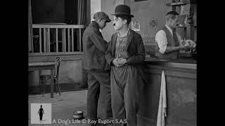 Charlie Chaplin Hides Scraps - A Dog