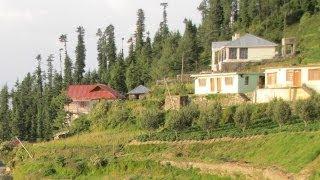 Fagu At A Glance, Himachal Pradesh