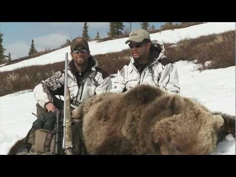 SOA Alaskan Brown Bear