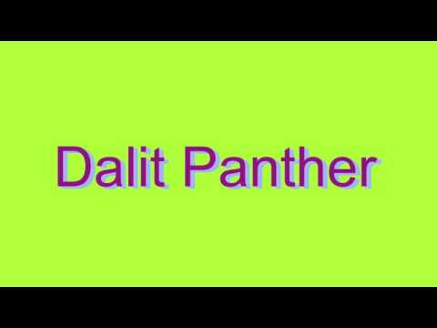How to Pronounce Dalit Panther