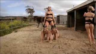 Horse Burlesque
