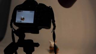 (تصوير المنتجات) تعلم التصوير الفوتوغرافي الحلقه 3